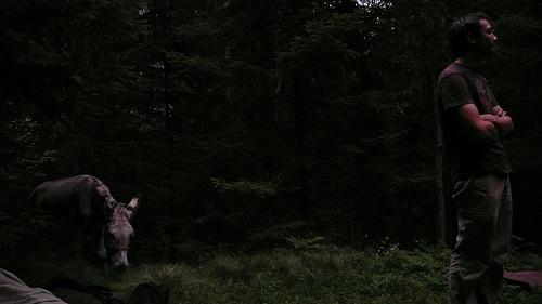 un coin dans la foret pour camper avant l'orage