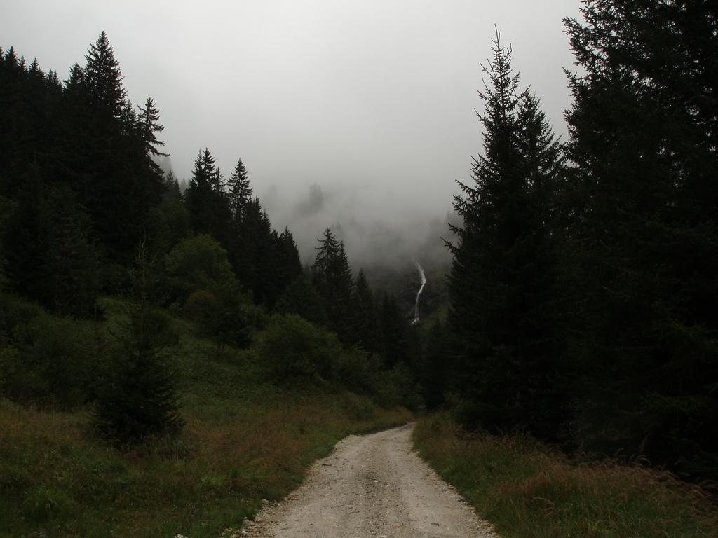 du brouillard
