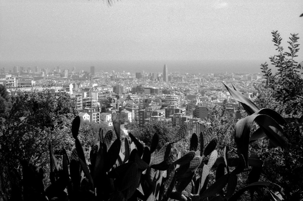 Barcelona and the sea