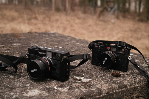 Konica Hexar RF and Leica M6