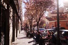 Madrid - 09