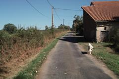 Moulin Paute (Videix) - 201008