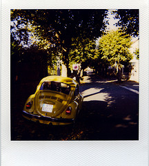 October 2010 Polaroids