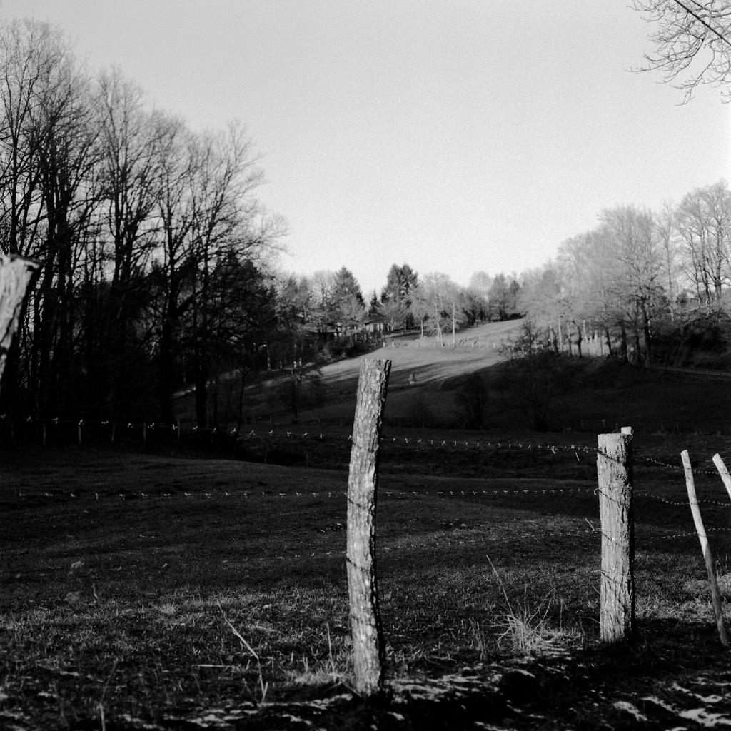 Un autre champ. À la campagne il y a des champs partout.