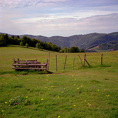 Promenade dans les Vosges