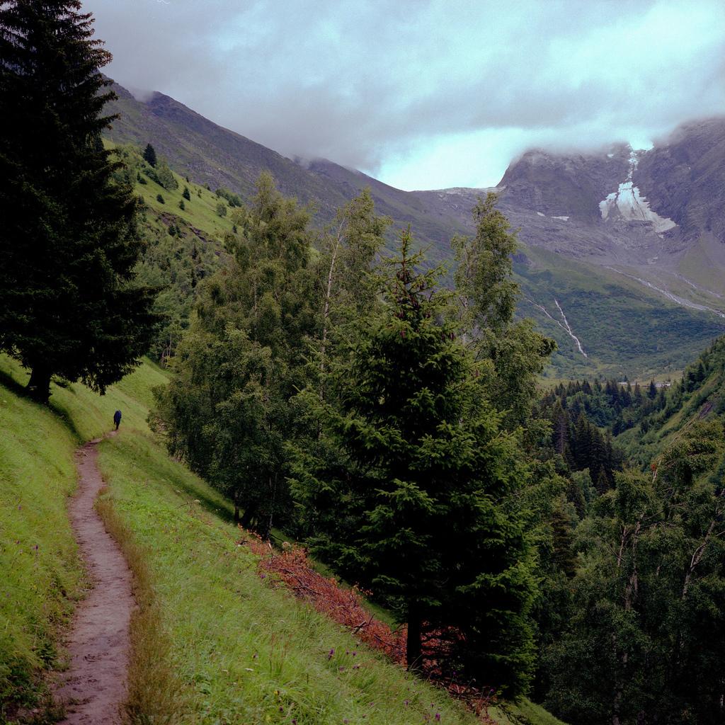 Chemin vers les Chalets de Miage