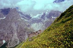 Promenade dans le Massif du Mont Blanc - 2010