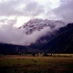 Promenade à Plan Glacier - 201107